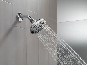 Use This Simple Home Remedy To Clean Your Showerhead