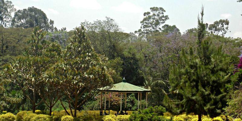 Nairobi City park