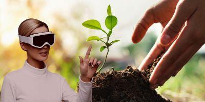 AR Tree Planting