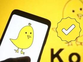 Koo Yellow Tick Yellow Verification