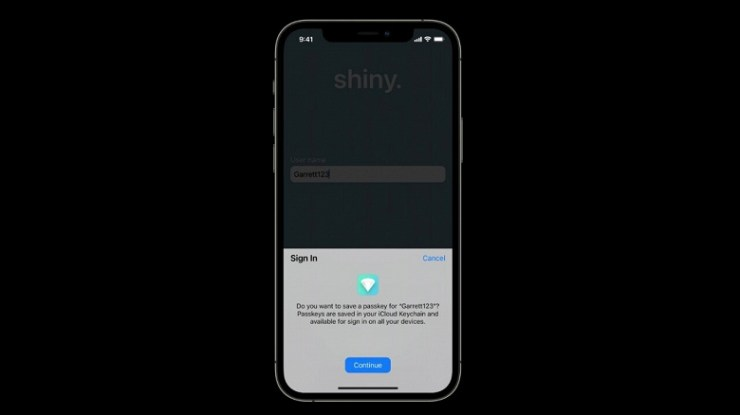 Apple suggests forgetting about passwords and completely replacing them with Face ID and Touch ID.  Passkeys Technology Coming This Year