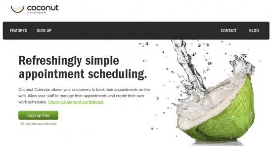 Coconut Calendar Top 16 online appointment scheduling software
