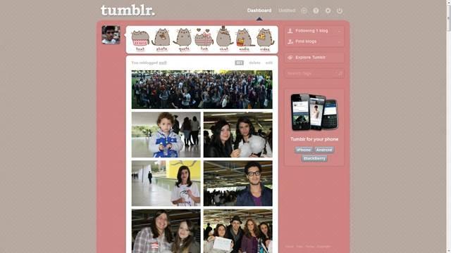 Pusheen 49 Useful Tumblr dashboard theme for Tumblr User