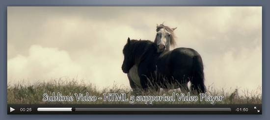 Sublime Video – A HTML 5 supported Video Player