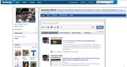 Vista Ultimate Skin for Facebook