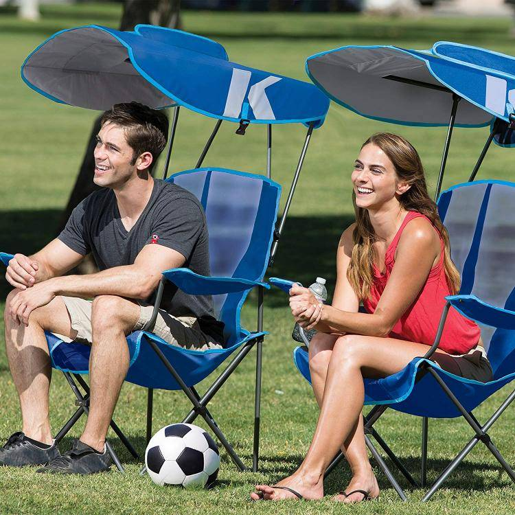 this genius canopy chair with a screen protects you from the sun and mosquitoes 6155 Awesome Canopy Chair With Mosquito Protector