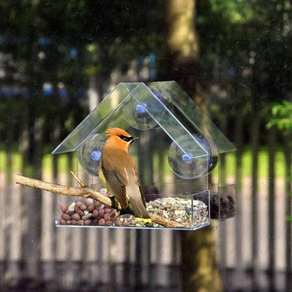 Transparent House Clear Bird Feeder