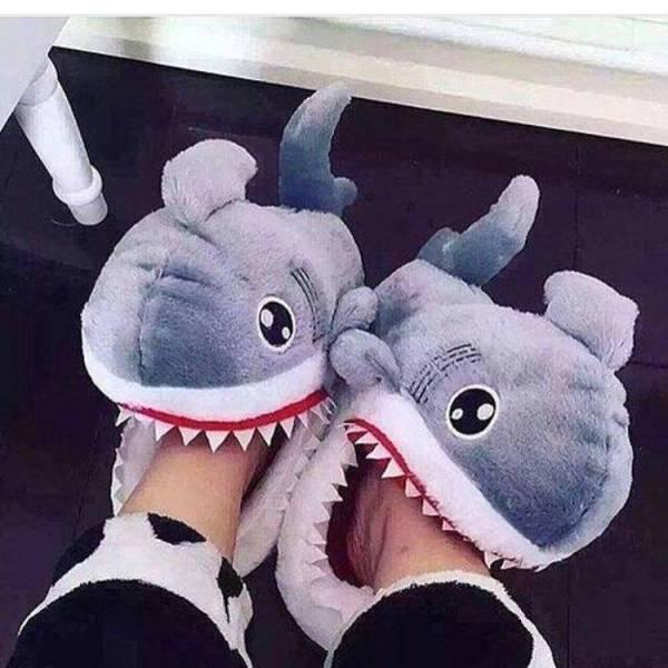 Shark Slippers Gadkit
