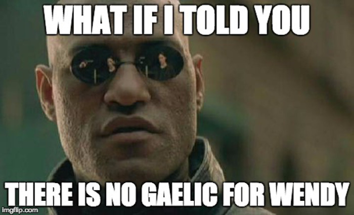 "Matrix Morpheus meme - ""What if i told you there is no Gaelic for Wendy"""