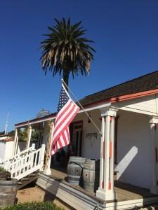 San Diego Gänseblümchen&Sonnenschein22