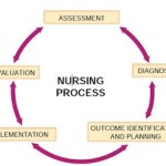 Nursing process and its components