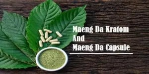 Read more about the article All About To Know Maeng Da Kratom And Maeng Da Capsules
