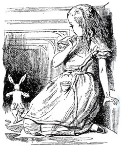 alicerabbit