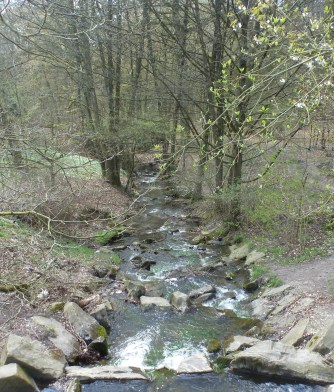 Saalermühlensee-Überlaufbach