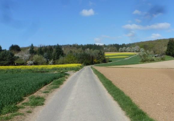 Wanderweg zur Golfanlage Bad Neuenahr -Ahrweiler