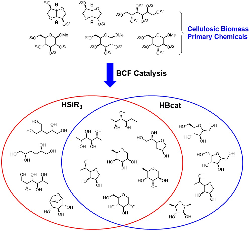 hight resolution of this venn diagram shows the compounds we have synthesized in a single step from a primary biorenewable glucose sorbitol isosorbide etc