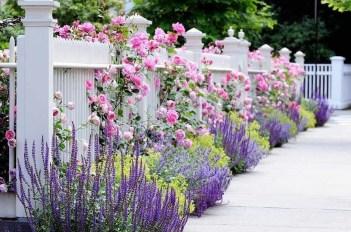 Perfect Home Garden Design Ideas That Make You Cozy 24