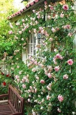Perfect Home Garden Design Ideas That Make You Cozy 28