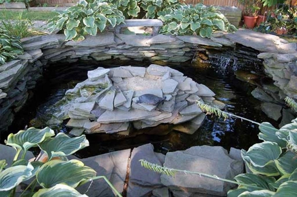 Stunning Backyard Aquarium Ideas 02