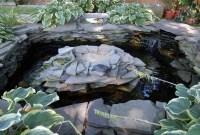 Stunning Backyard Aquarium Ideas 02