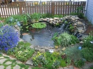 Stunning Backyard Aquarium Ideas 03