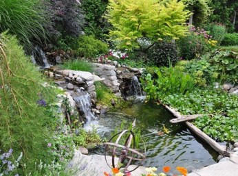 Stunning Backyard Aquarium Ideas 08