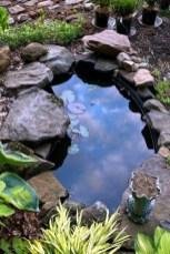 Stunning Backyard Aquarium Ideas 13