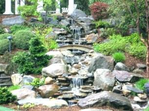 Stunning Backyard Aquarium Ideas 15