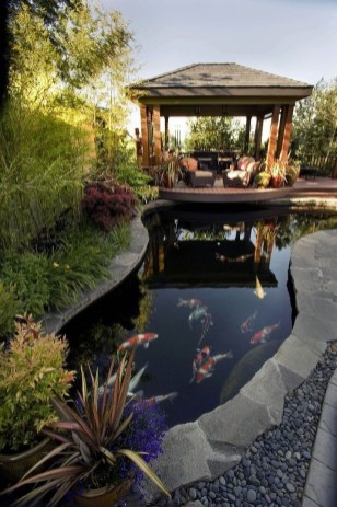 Stunning Backyard Aquarium Ideas 27
