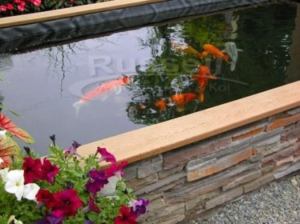 Stunning Backyard Aquarium Ideas 28