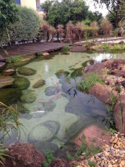 Stunning Backyard Aquarium Ideas 35