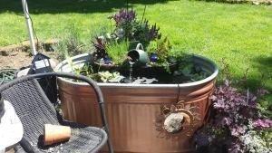 Stunning Backyard Aquarium Ideas 43