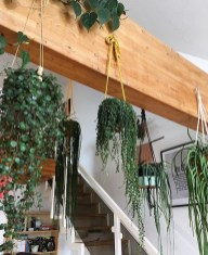Latest Home Patio Design With Hanging Plants 11