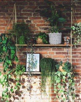 Latest Home Patio Design With Hanging Plants 16