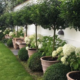 Fabulous Garden Design Ideas For Small Space That Looks Cool 01