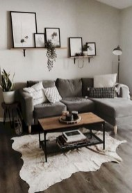 Fantastic Rug Living Room Design Ideas You Must Have 13