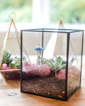 Fascinating Diy Terrariums Ideas To Try This Seasonl 06