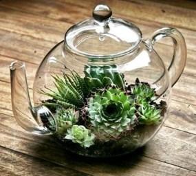 Fascinating Diy Terrariums Ideas To Try This Seasonl 12