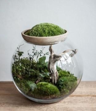 Fascinating Diy Terrariums Ideas To Try This Seasonl 19