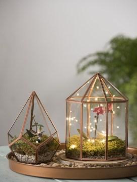 Fascinating Diy Terrariums Ideas To Try This Seasonl 22