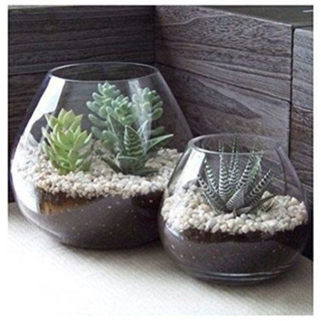 Fascinating Diy Terrariums Ideas To Try This Seasonl 28