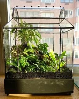 Fascinating Diy Terrariums Ideas To Try This Seasonl 39