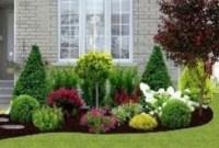 Newest Green Grass Design Ideas For Front Yard Garden 32