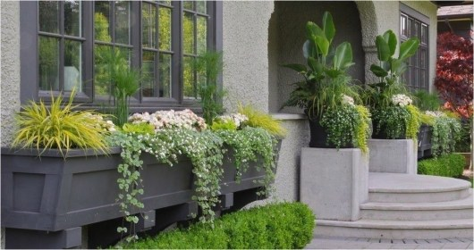 Unique Window Design Ideas With Plant That Make Your Home Cozy More 06