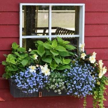 Unique Window Design Ideas With Plant That Make Your Home Cozy More 25