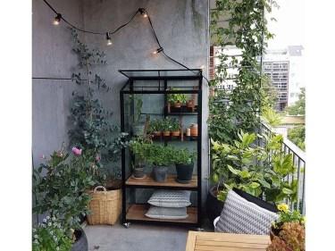 Unique Window Design Ideas With Plant That Make Your Home Cozy More 34