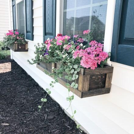 Unique Window Design Ideas With Plant That Make Your Home Cozy More 36