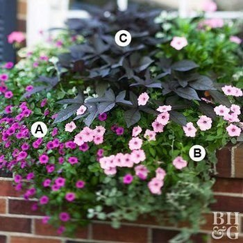 Unique Window Design Ideas With Plant That Make Your Home Cozy More 37