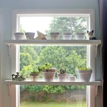 Unique Window Design Ideas With Plant That Make Your Home Cozy More 39