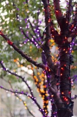 Casual Diy Outdoor Halloween Decor Ideas For Your Frontyard 07